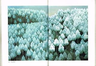 04-北山初雪.jpg