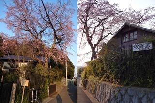 2014.03.27.e2.jpg